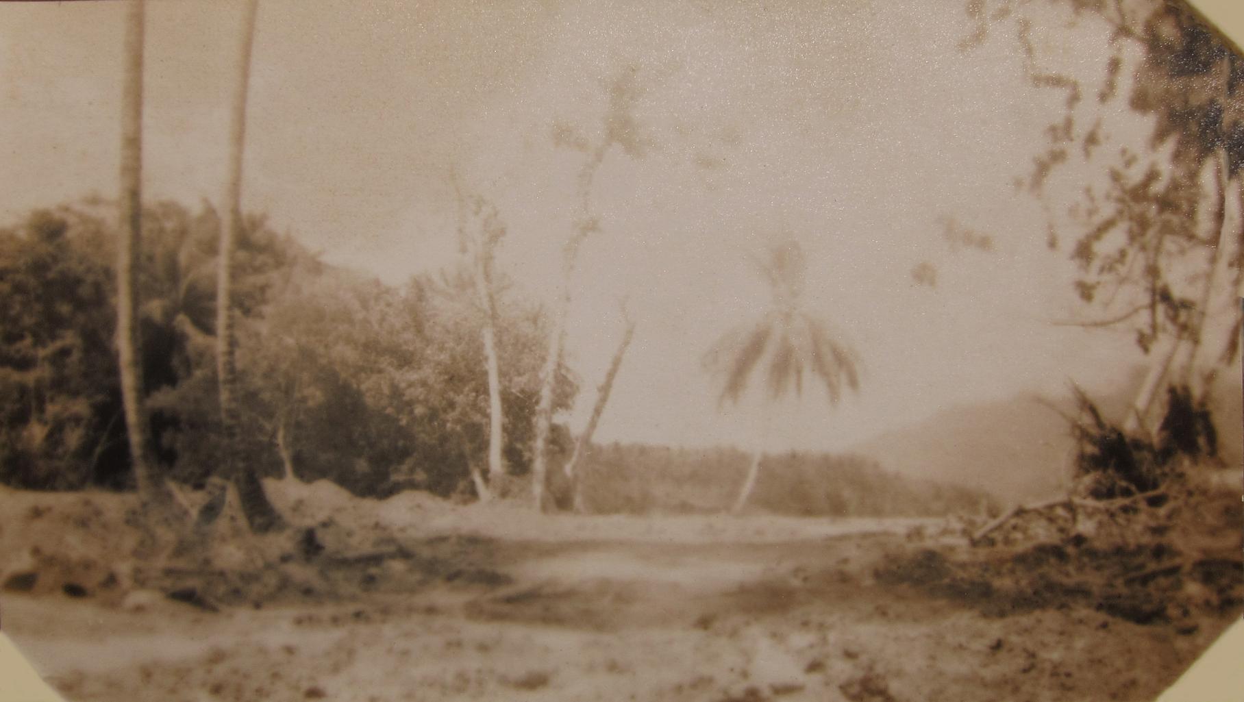 IMG_7804 Scene Milne Bay RAAF 1943 War Diary upload